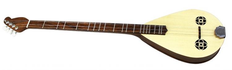 Gitara diatoniczna