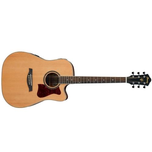 Ibanez - Gitara westernowa – zestaw
